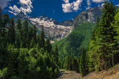 Ochtend in de bergen Dombay Stock Afbeelding