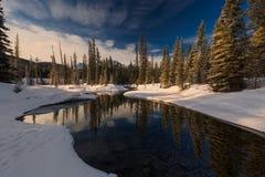 Ochtend in de Canadese Rotsachtige Bergen stock foto's