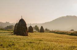 Ochtend in de Karpaten royalty-vrije stock foto's