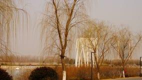 Ochtend dichtbij het Chinese het leven gebied parkï ¼ die ï ¼ ‰ ˆsping Royalty-vrije Stock Afbeeldingen