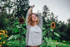 Ochtend in een zonnebloemtuin Royalty-vrije Stock Foto