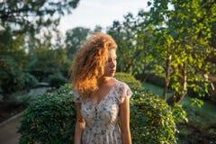 Ochtend in een zonnebloemtuin Royalty-vrije Stock Foto's