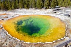 Ochtend Glory Hot Spring, het Nationale Park van Yellowstone, Wyoming Stock Afbeeldingen