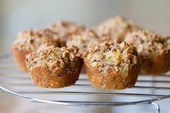 Ochtend Glory Muffins Royalty-vrije Stock Fotografie