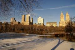 Ochtend in het Central Park Royalty-vrije Stock Fotografie