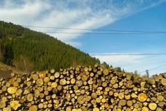 Ochtend in het het huishoudenhout van de dorps verse lucht Stock Afbeelding