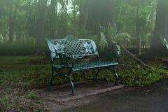 Ochtend in het park met een ontspannend geluk van de dagverhoging royalty-vrije stock afbeeldingen