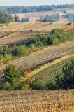 Ochtend in het platteland, gebieden stock fotografie