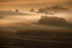 Ochtend nevelig landschap in de riviervallei Stock Foto's