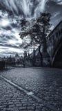 Ochtend onder Charles Bridge royalty-vrije stock foto's