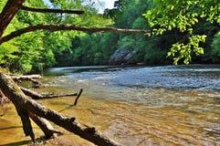 Ochtend op Dan rivier Royalty-vrije Stock Foto's
