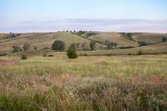Ochtend op een gebied van grassen naast een heuvel Royalty-vrije Stock Afbeelding