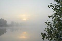 Ochtend op het meer stock afbeeldingen