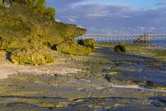 Ochtend op het oceaaneiland van kustzanzibar stock foto's
