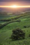 Ochtend over rollend Engels plattelandslandschap in de Lente Stock Afbeelding