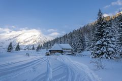 Ochtend in sneeuwbergvallei Stock Foto