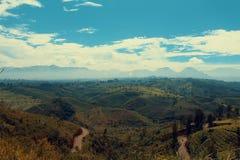Ochtendglorie nam ik de heuvel in Indonesië over Stock Foto