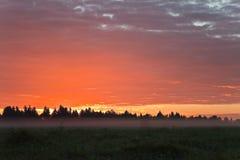 Ochtendhemel met gekleurde wolken en mist op de gebieden Stock Fotografie