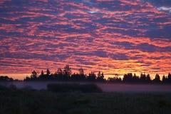 Ochtendhemel met gekleurde wolken en mist op de gebieden Royalty-vrije Stock Afbeeldingen