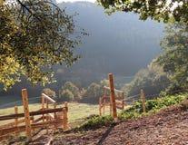 Ochtendlicht en bomen met een houten omheining op een landbouwbedrijf in de heuvels royalty-vrije stock afbeeldingen
