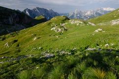 Ochtendmening aan Mangart-pas met verlichte weiden, Julian Alps, het nationale park van Triglav, Slovenië, Europa stock foto's