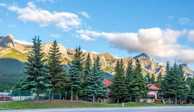 Ochtendmening bij de bergen in Canmore - Canada stock foto's