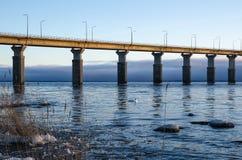 Ochtendmening door de brug Stock Foto's