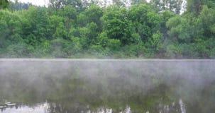Ochtendmist op de rivier stock footage