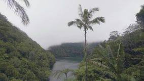 Ochtendmist over meer en groen tropisch bos op heuvels Nevelige nevel en tropisch meer onder groene hoogland en berg stock footage