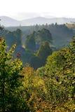 Ochtendnevel over de bovenkanten van bergen en bomen en de eerste stralen van de het toenemen zon De schoonheid en de kalmte van stock afbeelding