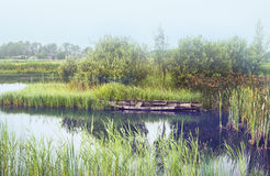 Ochtendrivier in oud Nederlands dorp Stock Foto's