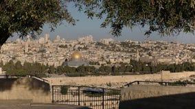 Ochtendschot van koepel van de rots door olijvenbomen wordt ontworpen in Jeruzalem dat stock videobeelden