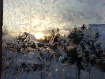 Ochtendsneeuwvlokken op glas Stock Foto
