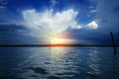 Ochtendvogels die op dramatische hemel bij zonsopgangzonsondergang vliegen Royalty-vrije Stock Fotografie