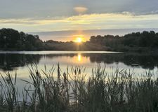 Ochtendzonsopgang over het meer met riet royalty-vrije stock fotografie