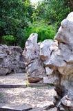 Ociągający się ogród, rockery Zdjęcia Stock