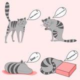 Ocio de los gatos Imagen de archivo