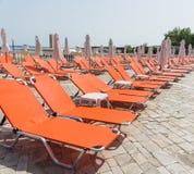 Ociosos rojos cerca de la piscina en Sunny Beach en Bulgaria Imagenes de archivo