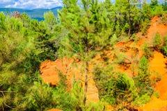 Ockerhaltige Ablagerung Roussillon: Schöne Kiefern und orange Felsen stockfotos