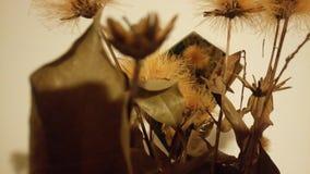 Ockrablommor Arkivfoto