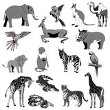 också vektor för coreldrawillustration Uppsättning av djur, papegoja, giraff, apa, gasell, elefant, noshörning, känguru, kamel, l Royaltyfri Foto