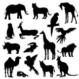 också vektor för coreldrawillustration Uppsättning av djur, papegoja, giraff, apa, gasell, elefant, noshörning, känguru, kamel, l Royaltyfri Bild