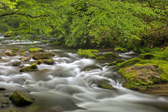 Oconaluftee River Stock Images