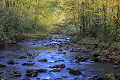 Free Oconaluftee River Stock Photos - 98748563