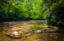The Oconaluftee River, at Great Smoky Mountains National Park, N Stock Photos