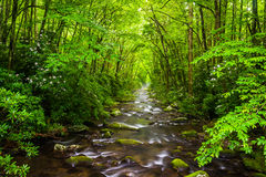 The Oconaluftee River, at Great Smoky Mountains National Park, N Royalty Free Stock Photography