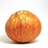 Oconut de ¡ de Ð Photos stock