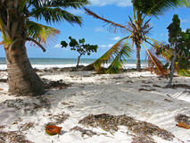 Сoconut island. Cuba. Royalty Free Stock Photos