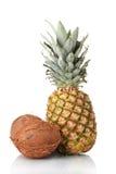 Сoconut and pineapple Stock Image