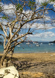 Ocotal Beach in Guanacaste - Costa Rica Royalty Free Stock Photo